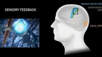 Ilustrasi Brain-computer Interface (Neuralink)