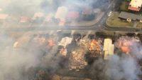 Kebakaran hutan Australia (net)