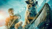 Sinopsis Film The Call Of The Wild, Kisah Petualangan yang Menakjubkan 3
