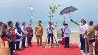 Wakil Presiden Maruf Amin Tanam Pohon di Pariaman