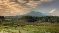 PPKM Darurat Jawa Bali Pengaruhi Sektor Pariwisata (net)