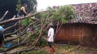Diterpa Angin Kencang, Empat Rumah Rusak Parah 3